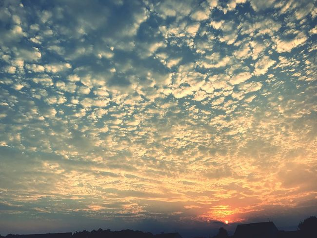 Sunset Cloud - Sky Sky Sky_collection Sky And Clouds Sunsets Sunset_collection Skyporn Clouds And Sky Clouds Cloudscape Cloud_collection  Cloud And Sky Sunset And Clouds  Sunset Lovers