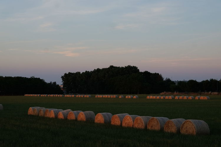 Country Hay Bales On Field Summer Views Sunset