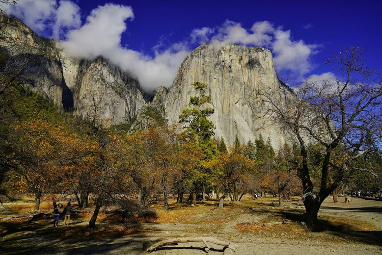 Let's View El Capitan with Me! My USA Journey USA USAtrip USA Photos Landscape Landscape_Collection Landscape_photography Yosemite Yosemite National Park California Sony Travel Traveling Travel Photography Travelling Sky Skyporn EyeEm Best Shots EyeEmNewHere EyeEm Nature Lover EyeEm Selects EyeEm EyeEm Gallery EyeEmBestPics Eyeemphotography EyeEm Masterclass Travel Destinations Calm Tranquility Tranquil Scene Sky And Clouds EyeEmbestshots Mountain Sky Landscape Cloud - Sky Rock Hoodoo Eroded Geology Physical Geography Natural Landmark Canyon Natural Arch Rock Formation Rugged Rocky Mountains Stay Out