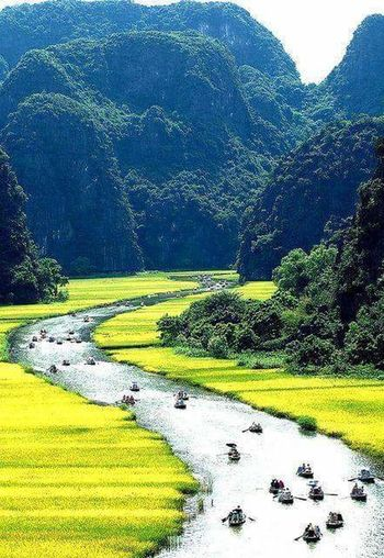 Lake Tree Green Color Water Nature Landscape Outdoors Scenics Beauty In Nature No People Day Mountain Grass Sky