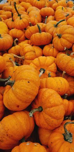 Supermarket Fruit Backgrounds Market Consumerism Full Frame Retail  Pumpkin Citrus Fruit For Sale