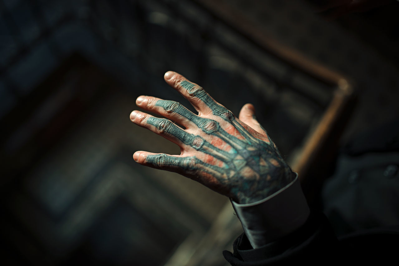 human hand, hand, human body part, focus on foreground, one person