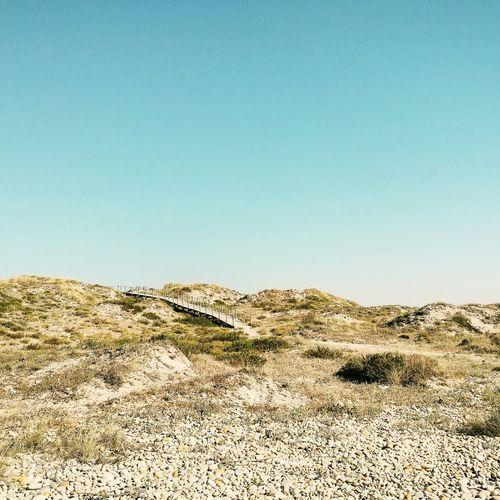 Desert island disk Vanishing Point Desert Landscape Landscape