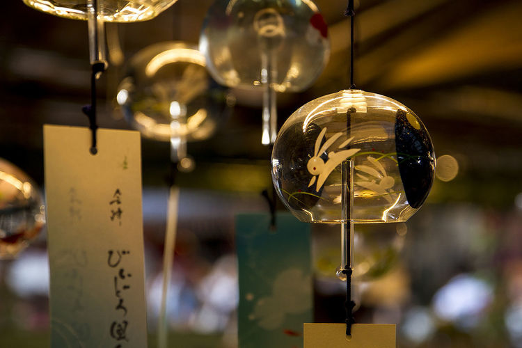 Hanging Focus On Foreground No People Close-up Night maturi;fair