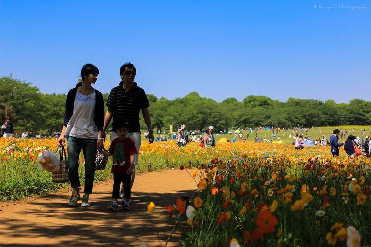 Picnic Flowers Flower 昭和記念公園 EyeEm Best Shots EyeEm Beautiful Nature EyeEm Nature Lover Nature Sky And Clouds