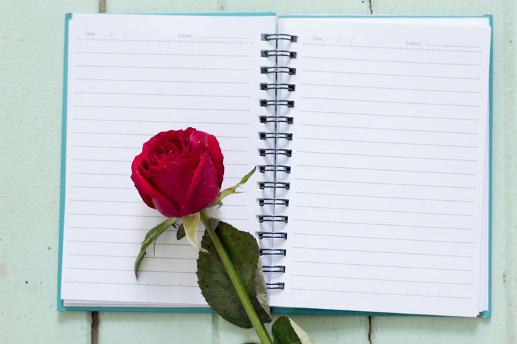 High angle view of rose and notebook on table