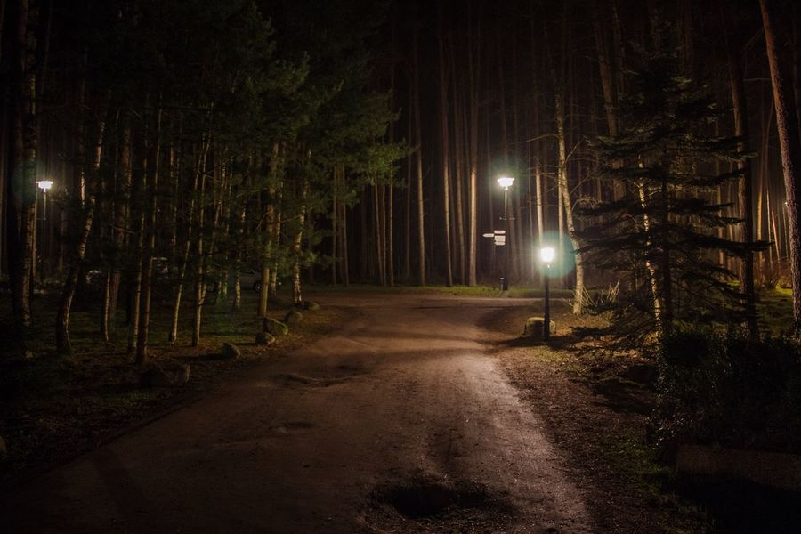 Licht Nacht Bäume Weg The Great Outdoors - 2015 EyeEm Awards Nature On Your Doorstep Protecting Where We Play Learn & Shoot : After Dark After Dark Drewitz, Mecklenburg Vorpommern