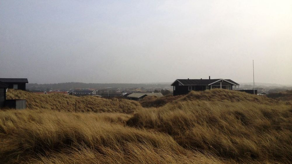 Blustery day Denmark Architecture Beauty In Nature Building Exterior Built Structure Clear Sky Day Field Grass House Landscape Løkken Nature No People Outdoors Roof Scenics Sky Tranquility Windblown Grass EyeEmNewHere Shades Of Winter