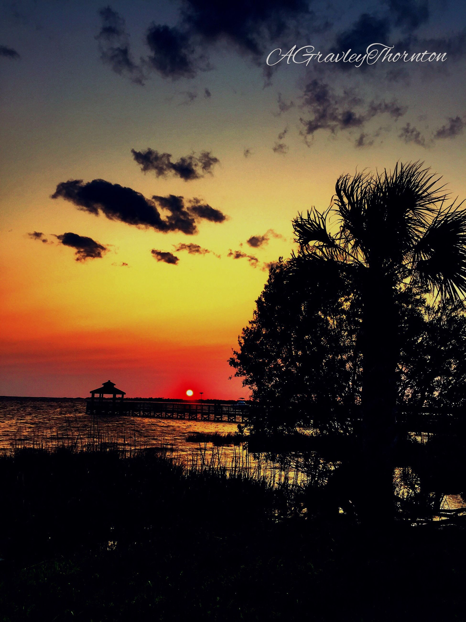 sunset, silhouette, scenics, sky, sea, tranquil scene, tranquility, beauty in nature, horizon over water, water, orange color, nature, idyllic, tree, cloud - sky, beach, sun, dramatic sky, dusk, cloud