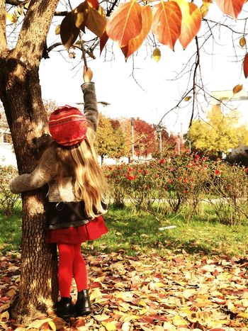 Redhat Kidsphotography Kidsportfolio Kidsportrait Blond Blonde Girl Kids Of EyeEm Trees And Kids Tree Trees And Nature Autumn Colors Left Autumn🍁🍁🍁 Outdoors One Person Real People Tree Day Full Length Sky