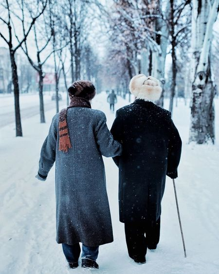 Winter Snow Cold Temperature Rear View Warm Clothing Clothing Tree Men Women Togetherness Adult Nature Two People Real People Full Length Walking Couple - Relationship Day People Lifestyles