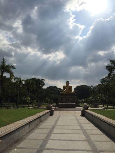 Buddha Sri Lank Sri Lanka Sri Lanka Travel Sri Lanka 🇱🇰 SriLanka Architecture Buddha Statue Cloud - Sky Palm Tree Spirituality Sri Lankan