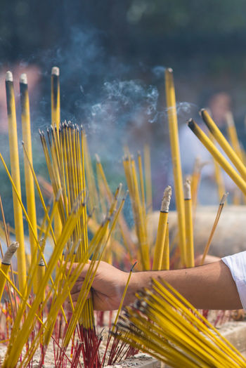 Cropped hand holding yellow incenses