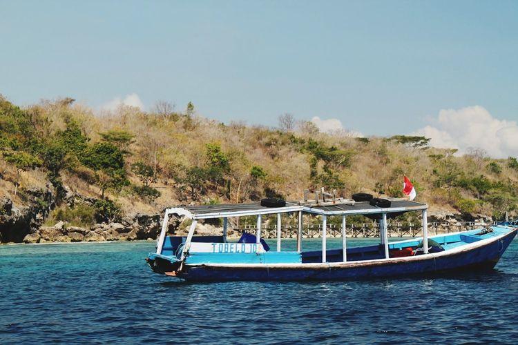 EyeEm Selects Tree Water Nautical Vessel Blue Palm Tree Sky Landscape