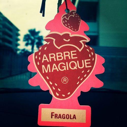 Arbremagique Fragola Maduixa Fresa Strawberry Tehechaparaatras Tortazo Cuandoentrasal Coche