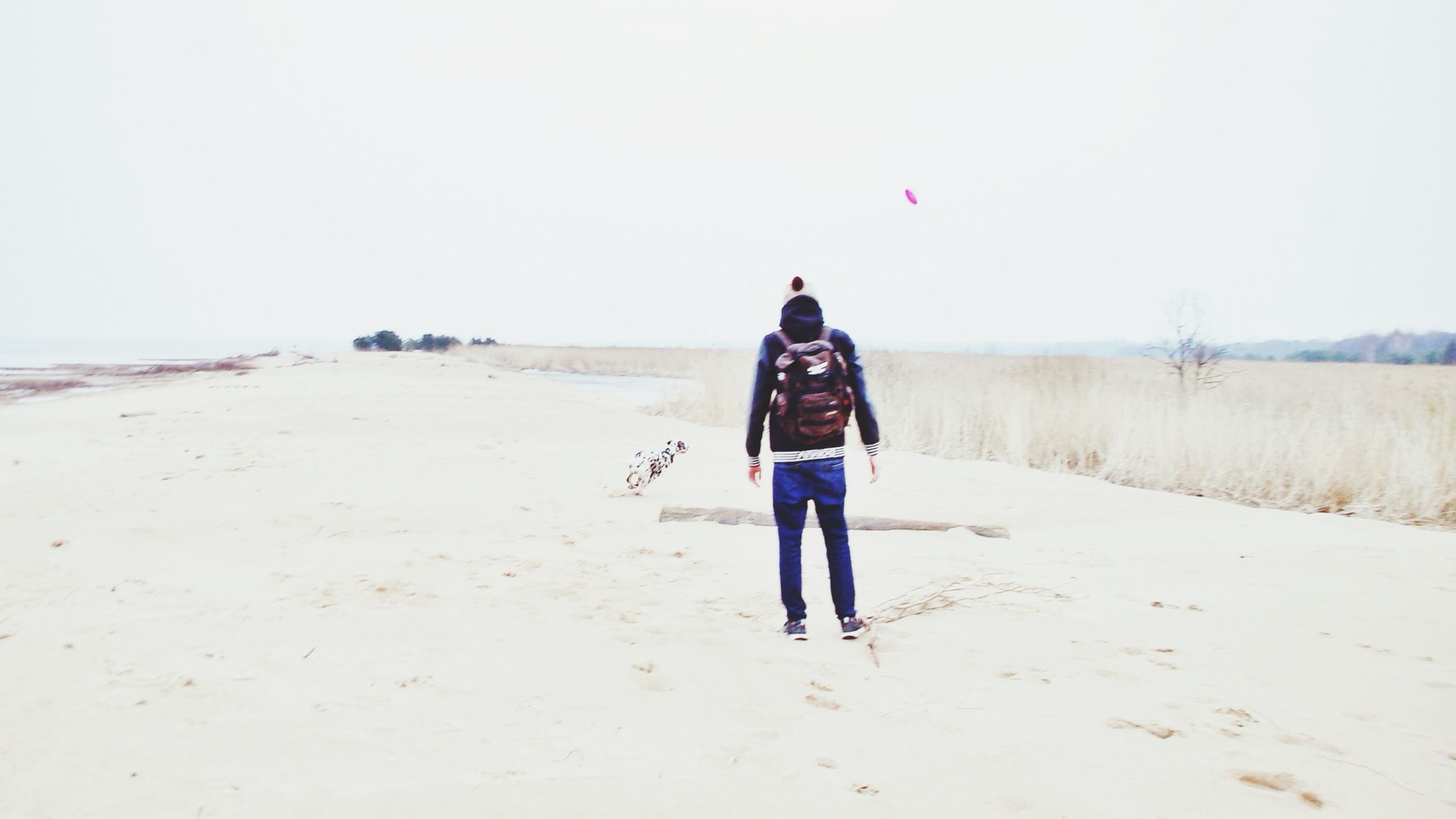 beach, sand, full length, clear sky, shore, lifestyles, rear view, sea, leisure activity, casual clothing, walking, copy space, water, standing, vacations, tranquility, horizon over water, nature