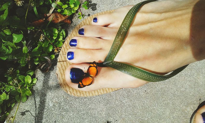 Low section of woman with butterfly on footpath