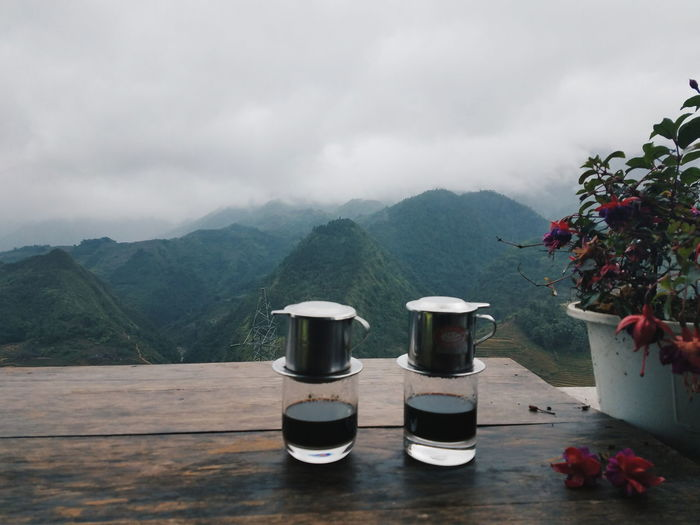 Potted plants on table by mountains against sky