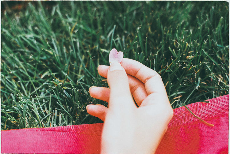 Cropped Hand Of Person Holding Heart Shape Petal Over Grass