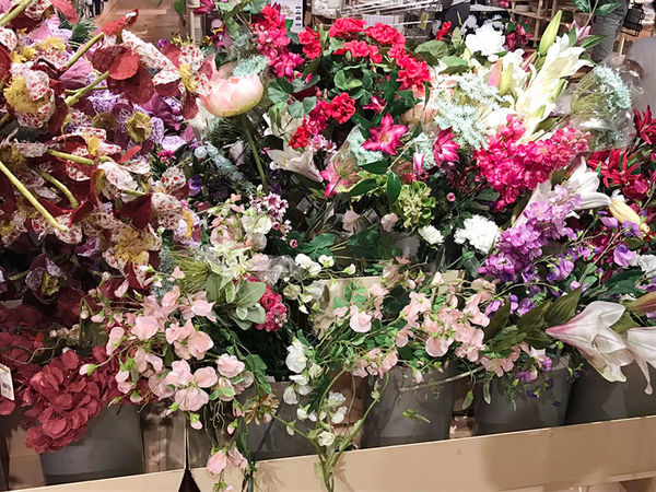 Flower Flower Head Beauty In Nature Beautiful Flowers BE ALwAYZzzzz.....blooooooOoooMinG....😘😍😘😘😘😘 😘😍💕💕💕 Full Frame Close-up Shoppping Lovedit