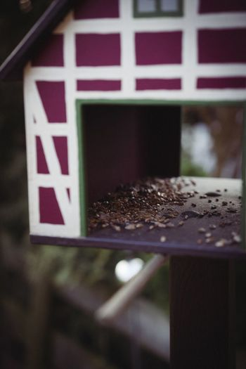 I like to capture anything. When you find the right angle, every motive can look awesome. Nofilter Photooftheday Pit Birdhouse Bird SonyA7s Garden Day No People Close-up Food Outdoors Nature EyeEmNewHere