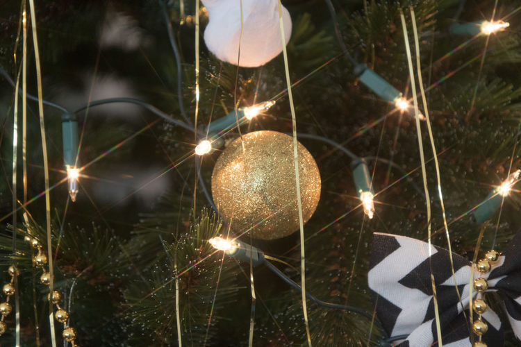 Illuminated Night Celebration Glowing Decoration Burning Event Lighting Equipment Close-up Christmas Decoration Light Christmas Lights Nature No People Fire Electric Light Holiday Christmas Heat - Temperature Sparkler Christmas Christmas Ornament christmas tree