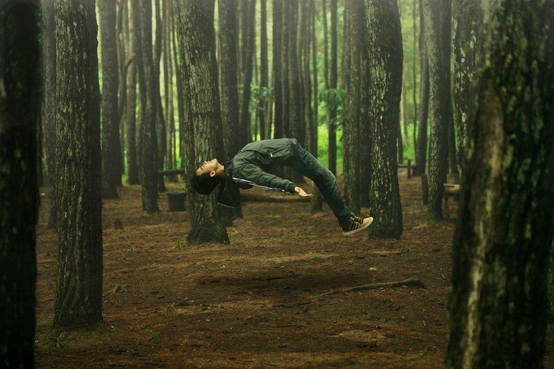 """Taken""Manipulation Manipulated Photography Nature Pine Forest Forest Forest Photography Levitation Levitate Photoshop NX500 Naturelovers"
