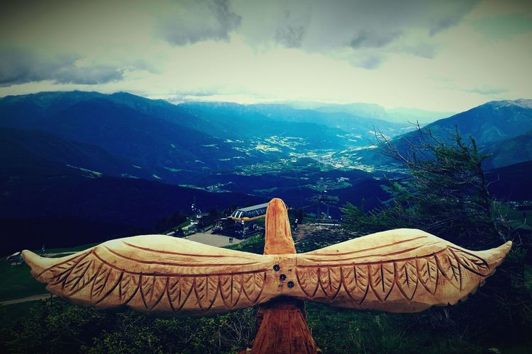 Sky Nature Adler Wood Animal Wood - Material Schnitzen ArtWork The Summer  Mountain Vom Berg Ins Tal Aussicht Leben Wandern South Tyrol Effect Zoom The Great Outdoors - 2016 EyeEm Awards