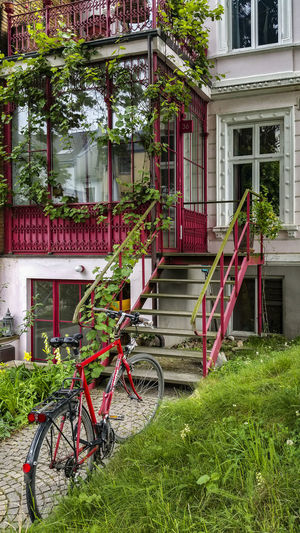 FrontGarden Architecture Building Building Exterior Built Structure City City Life Day Grass Green Color Growth Mode Of Transport Nature No People Outdoors Parked Parking Plant Red Red Bicycles Residential Building Stationary Tree