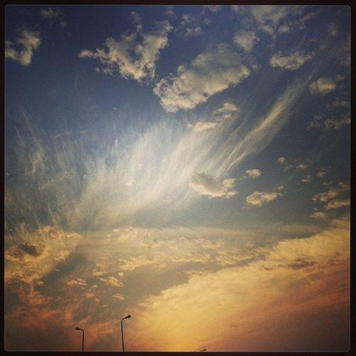 Sun Sky Ismaalia Rood miu