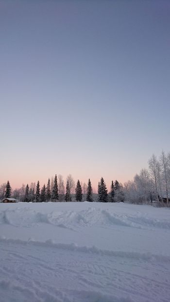 Winter Cold Temperature Frozen Snow Beauty In Nature Sky Outdoors -30°C