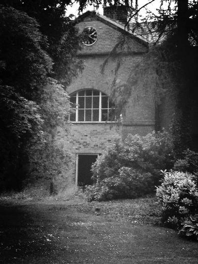 Architecture Nature Blackandwhite Schattenspiel