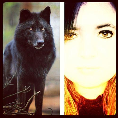 Shedding my human form to reveal my true self Trueform TrueSelf Loupdegarou Spiritanimal blackwolf shedding humanform werewolf wolf empath katlynn guardian
