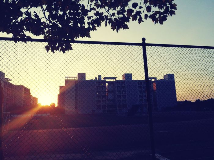 university first day Chainlink Fence Sunset Sky Tree City Outdoors Day No People