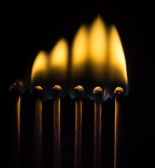 Close-up of illuminated matchsticks