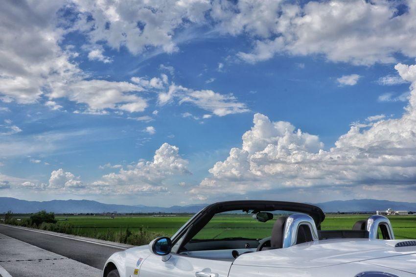 EyeEm EyeEm Best Shots Road Nature Beautiful Good Times 空 雲 青空 海 緑 マツダ ロードスター ドライブ Sky Clouds And Sky Mazda Roadster Mx5 Miata Car Driving Water Sky Cloud - Sky Vehicle Car Interior Driver Land Vehicle Car Point Of View