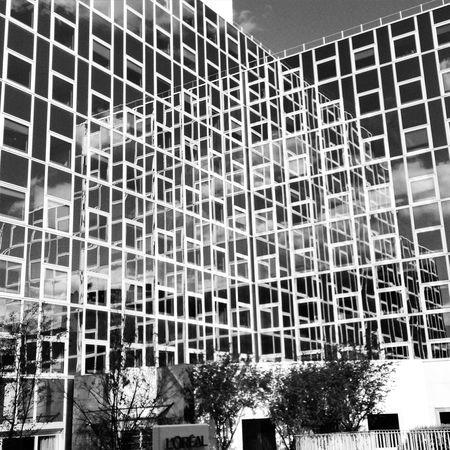 L'oreal building Miror Reflection Orherworld