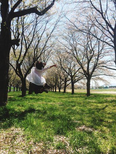 きゃーっ( *´艸`)ちょっと飛んでみたヽ(≧▽≦)ノ🌸🌸🌸ジャンプ‼️ ジャンプ サクラ さくら部 桜