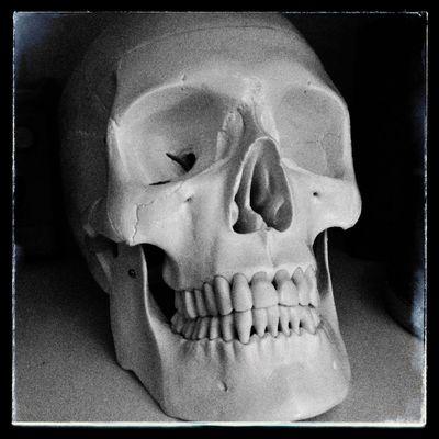 Skull Black And White Art Snapseed IPhone NovaFlash Portrait
