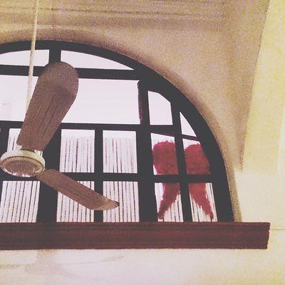 Where angels live Omgmexico2014 Playadelcarmen