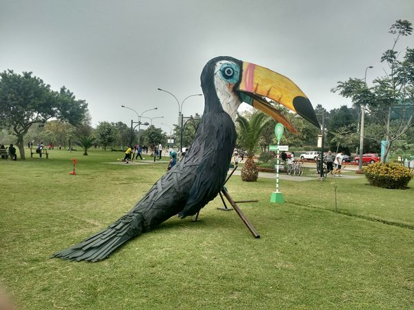 Animal Themes Arts Culture And Entertainment ArtWork Bird Day Field Grass Green Color Large Group Of People Mammal Nature Outdoors People Real People Sculpture Sky Statue Tree Tucan