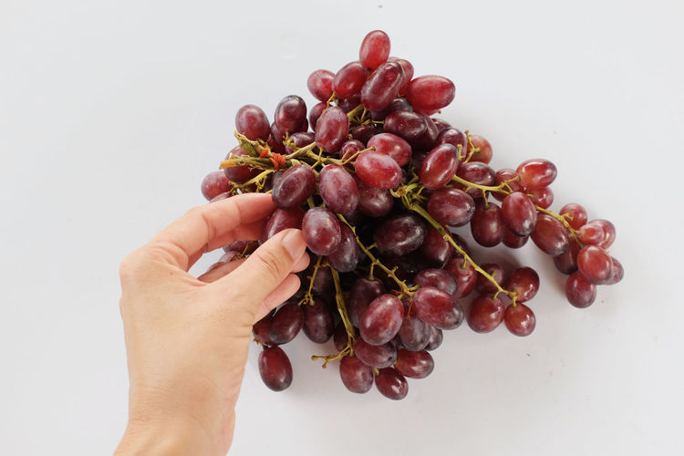Midsection of person holding berries against white background