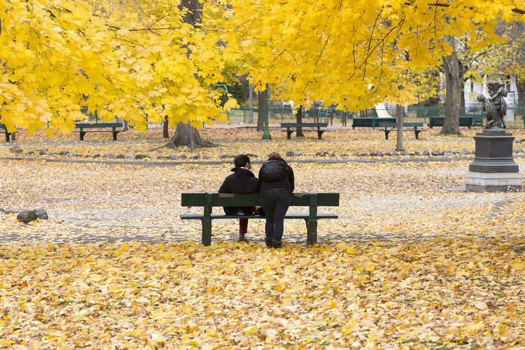 One person sitting and one leaning on a park bench in Fall Autumn Bench Sitting Rear View Warm Clothing Outdoors Beauty In Nature Park Yellow Unrecognizable People Silhouettes Person Leaning Person Sitting Fall Colours Dry Leaves On The Ground Riot Of Colours Public Park Montreal, Canada Real People Positive Emotion Relationship Friendship Friends