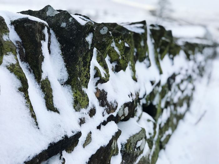 Stone Wall Snow Winter Cold Temperature White Color Weather Nature No People Close-up Beauty In Nature Frozen