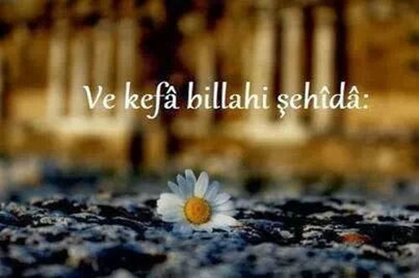 Allah ❤❤ Hi! I Love Hello World