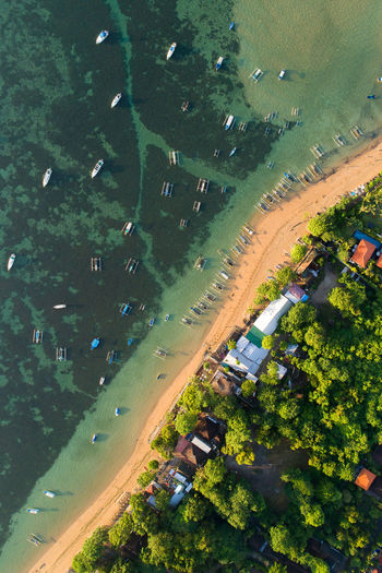 High Angle View Of Beach By Trees