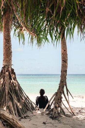 Man sitting on tree at beach against sky