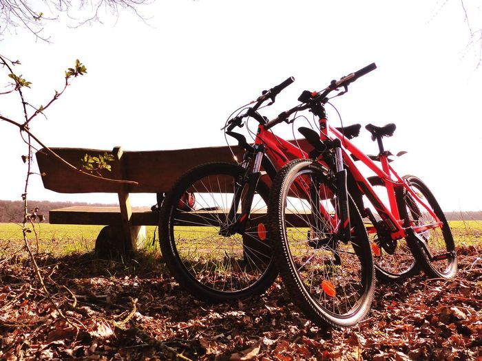 Bicycle Sky Nature Transportation Land Vehicle Plant Day Mode Of Transportation No People Stationary Bench Rural Scene Outdoors Fitness MTB MTB Biking Wheel Sport Excursion In The Natur EyeEm Nature Lover Springtime Healthy Lifestyle Fitnesslifestyle  Vacation Clear Sky