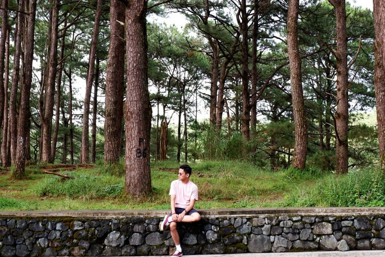 Man sitting on the ledge beside tree lanes