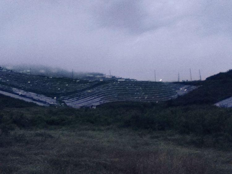 Cloud - Sky Field No People Landscape Grass Rural Scene Devastation Sunlight Islandscape Solar Panels Solar Energy Plant Total Loss Hurricane Irma 2017 Not Hurricane Proof VIWAPA Clean Energy Renewable Energy St. Thomas, Virgin Islands Usvi VIstrong Solarpanels